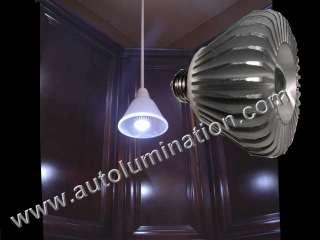 PAR 30 LED Flood Light Bulb
